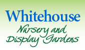 whitehouse logo text grad