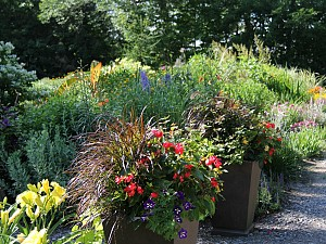 Lush containers frame- the entrance to one of-the display gardens