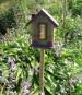 bird_house_1.jpg
